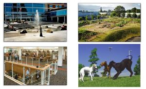 """Planning through """"Hillsboro 2020"""" and """"Hillsboro 2035"""" brought the city new open spaces, an expanded library, and even an off-leash dog park."""
